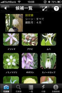 写真 2013-04-18 10 08 00.jpg